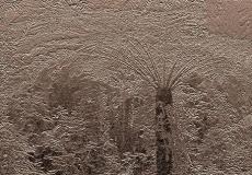 Embossed Nature #04