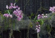 06 Floral Design
