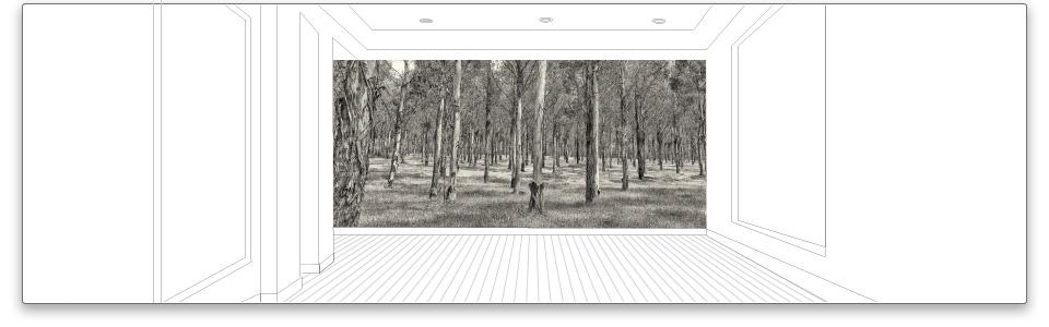 Visual Resource  - Art for interiors