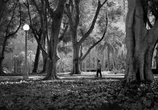 03 Hyde Park Sydney