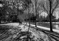08 Hyde Park Sydney