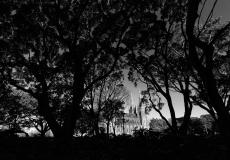 10 Hyde Park Sydney