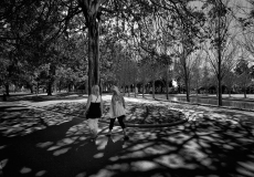 13 Hyde Park Sydney