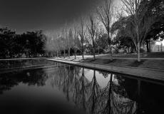 17 Hyde Park Sydney