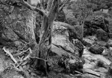 hanging rock # 8