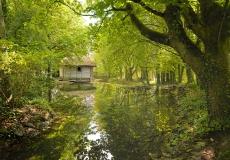 Irish Landscape 01