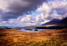 Irish Landscape 05