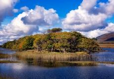 Irish Landscape 11