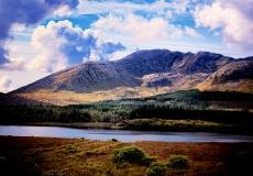 Irish Landscape 14