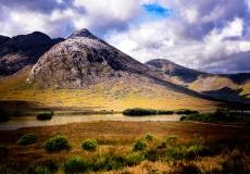 Irish Landscape 15