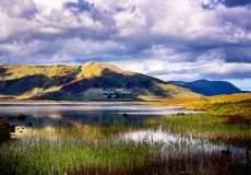 Irish Landscape 16
