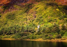 Irish Landscape 18