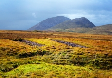 Irish Landscape 21