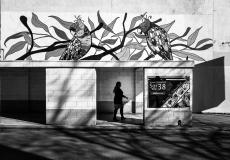 Melbourne Mono 2019 #53