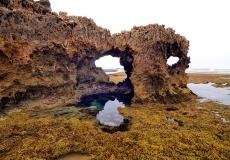 28 mornington peninsula national park