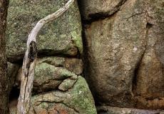 pyalong rocks # 4