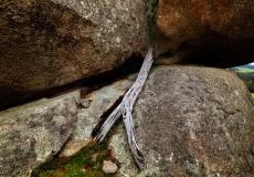 pyalong rocks # 6