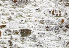 Walls of Ireland 05