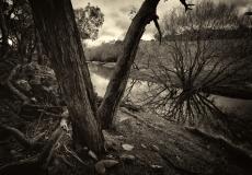 winterscapes # 11