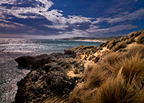 Mornington-Peninsula-Nat-Park-thumb