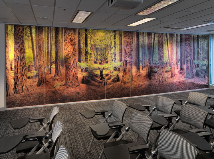 Visual Resource art for interiors glass