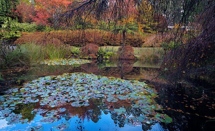 03 Seasons-Autumn VR Photo Art by Michael Collins