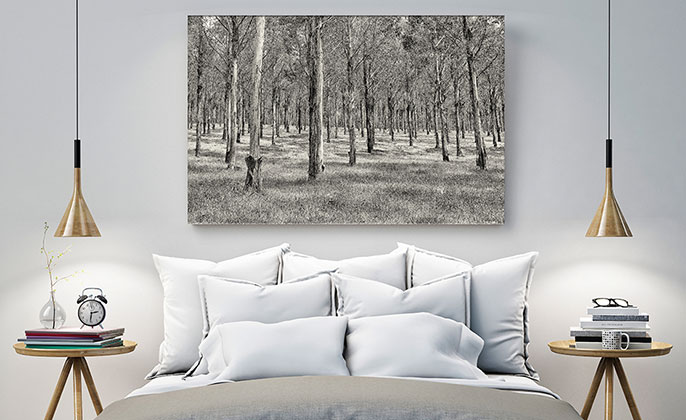 Photographic Artwork Mono by Visual Resource - Wall Art