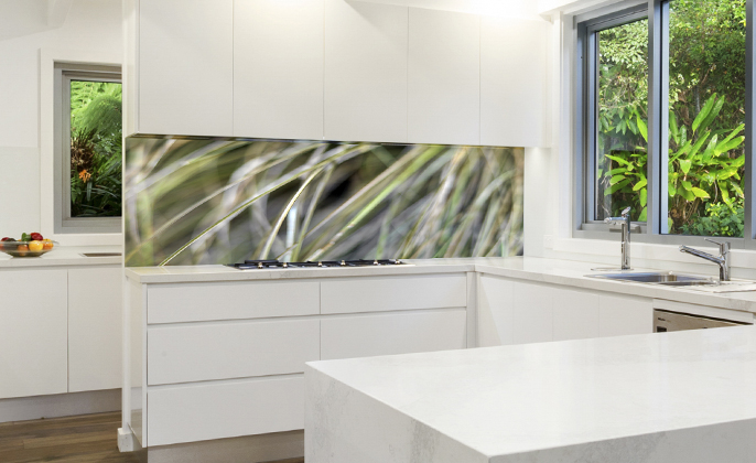 Printed kitchen splashback - VR Art Glass - photographic art NATURES SHAPE 17 by Michael Collins for VISUAL RESOURCE