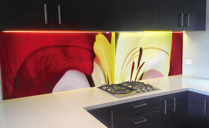 VR ArtGlass printed glass splashback NATURES SHAPE 4 by photographer Michael Collins for VISUAL RESOURCE