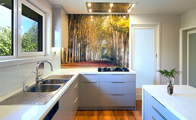 VR ArtGlass Printed glass splashback by Visual Resource Trees in the garden of VERSAILLES