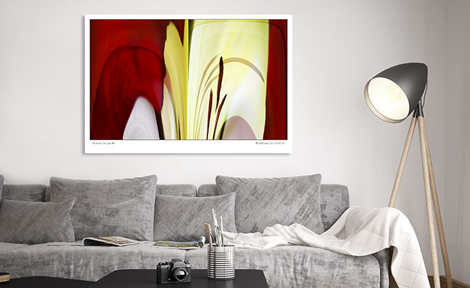 Visual Resource Art Print Photographic Wall Art NATURES SHAPE 4