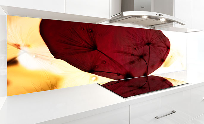 VR ART GLASS printed splashback by Visual Resource original photographic art 01 NATURES SHAPE Collection 2 Kitchen
